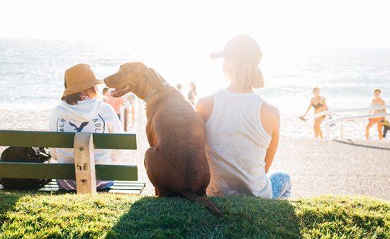 How To Establish and Form Joyful Habits | Tony Robbins
