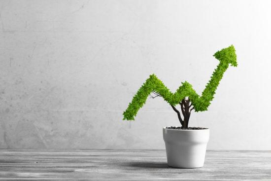 leverage endorsement deals for geometric growth