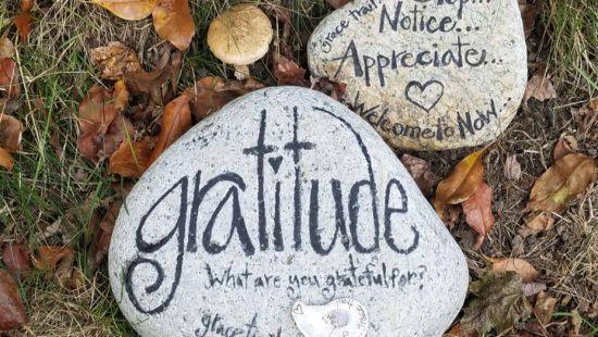 gratitude in life